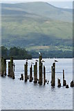 NS3882 : Old Pier Remains, Balloch by David Robinson