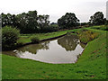 SP5968 : Sidepond by Watford staircase locks, Northamptonshire by Roger  Kidd