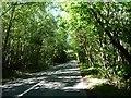 TQ5736 : A pedestrian's view of Bunny Lane by Christine Johnstone