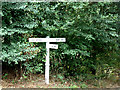 TL8424 : Signpost on Kings Hill by Adrian Cable