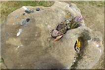 SK2775 : Offerings? by David Lally