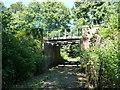 TQ5638 : Railway bridge in Friezland Wood by Christine Johnstone