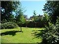 TQ5738 : Young trees alongside the Tunbridge Wells Circular Walk by Christine Johnstone