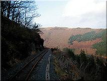 SN7377 : Vale of Rheidol Railway foot crossing by John Lucas