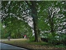 SO8813 : The entrance to Prinknash Park by David Howard