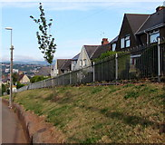 ST3288 : Houses on a bank above Christchurch Road, Newport by Jaggery