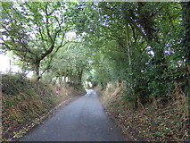 TL8627 : Tey Road, Earls Colne by Geographer