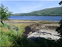 NS0472 : Unnamed burn entering the Kyles Of Bute by Thomas Nugent