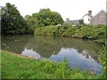 TQ3215 : Pond on Lodge Hill Lane, Ditchling by David Howard