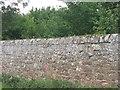 NT6374 : East Lothian estate wall by M J Richardson