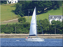 NS0374 : Yacht passing Colintraive by Thomas Nugent