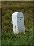 NS0273 : Milestone at Rhubodach by Thomas Nugent
