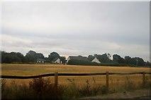S4852 : Field by Callan Rd by N Chadwick