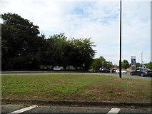 TQ3018 : Roundabout on Jane Murray Way, Burgess Hill by David Howard