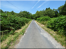 NS0177 : The B866 road by Thomas Nugent