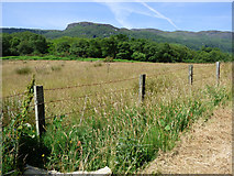 NS0177 : Field at Kinlochruel by Thomas Nugent