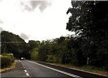 SO8406 : Painswick Road north of Stroud by David Howard