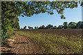 TQ2558 : Field edge by Ian Capper