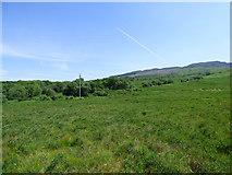 NS0180 : Moorland near Ardachuple Lodge by Thomas Nugent