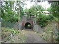 TQ0197 : Railway Bridge from the South Side (1) by David Hillas