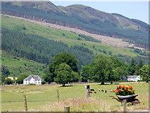 NR9983 : Clachan of Glendaruel by Thomas Nugent