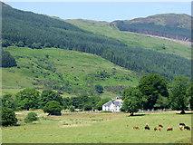 NR9983 : Farmland at Lephinkill Farm by Thomas Nugent
