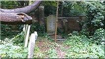 TQ2887 : Grave of Michael Faraday, Highgate Cemetery by Marathon