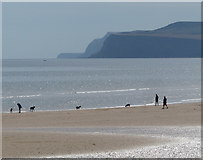 NZ6124 : Dog walkers on Redcar Sands by Mat Fascione