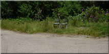 NS0281 : Chairs by the B836 by Thomas Nugent