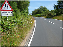 NS0281 : Single Track Road sign by Thomas Nugent