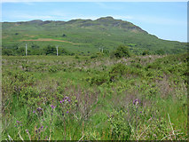 NS0281 : Moorland off the B836 road by Thomas Nugent