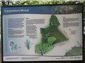 TQ0196 : Information Board at Carpenters Wood by David Hillas