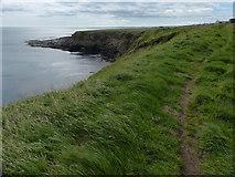 NT9955 : Berwickshire Coastal Path near Needles Eye by Mat Fascione