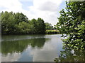 TQ0766 : The River Thames on the west side of Desborough Island by Mike Quinn