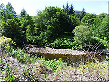 NS1481 : Little Eachaig River by Thomas Nugent