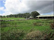 NS9740 : Former pond at Heatheryhall by Jonathan Thacker