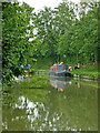 SP6586 : Grand Union Canal near Theddingworth in Leicestershire by Roger  Kidd
