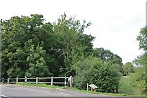 TQ0625 : Path by the River Arun, Billingshurst by David Howard