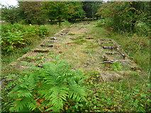 SK0017 : Rugeley (Penkridge Bank) Camp '13 Lines'- Shower Block (looking E) by John M