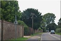 SU6127 : Petersfield Road, Bramdean by David Howard