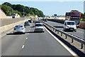 SX8769 : South Devon Highway near Aller Cross by David Dixon