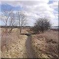 NT0973 : Drumshoreland and Winchburgh Railway by Richard Webb