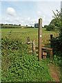 ST0007 : Cullompton: footpath to Ponsford Lane by Martin Bodman
