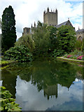 ST5545 : Wells Cathedral by Chris Gunns