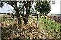 SE6732 : Fingerpost on Oxen Lane : Week 34
