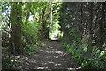 TQ5640 : Tunbridge Wells Circular Walk by N Chadwick