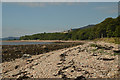 NC8600 : Pebbly Beach on the East Coast of Scotland by Andrew Tryon