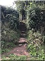 ST5862 : Footpath steps by don cload