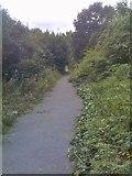 SO9593 : Tipton Path by Gordon Griffiths