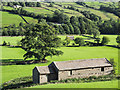 SD9897 : Barn close to valley floor of Swaledale by Trevor Littlewood